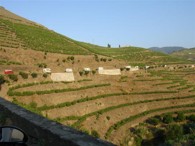 A caravana serpenteando as encostas de vinhas