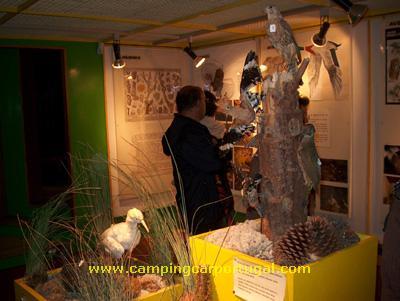 Visita ao museu da Reserva Natural das Dunas de S.Jacinto